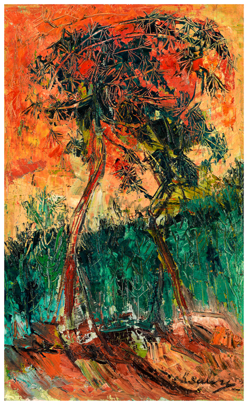 Trees Embracing / Kucaklasan Agaclar